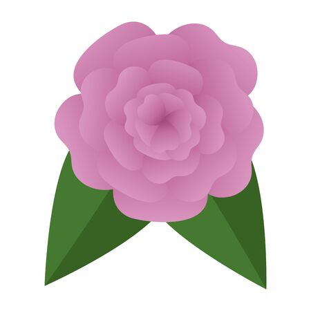 beautiful rose with leafs decoration vector illustration design Banque d'images - 129484425