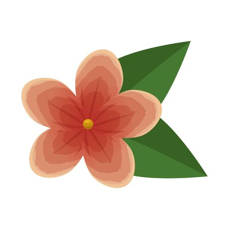 beautiful flower with leafs decoration vector illustration design Banque d'images - 129484570