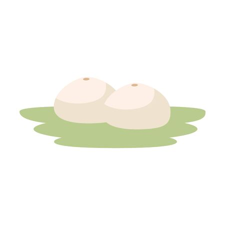 fresh cantaloupes in garden icon vector illustration design