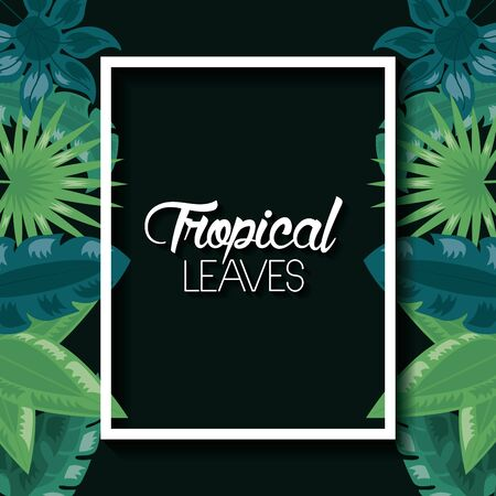 tropical leaves banner exotic nature dark background vector illustration