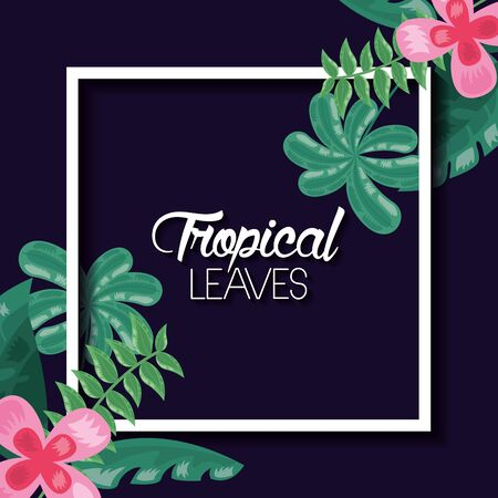 tropical leaves banner flower exotic nature dark background vector illustration