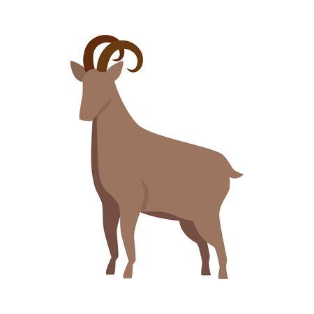 cute lamb farm animal icon vector illustration design Фото со стока - 129501698