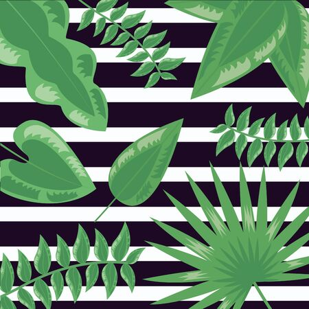 tropical leaves foliage stripes dark background vector illustration