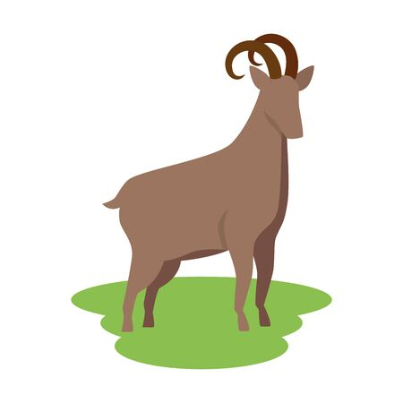 cute lamb farm animal icon vector illustration design