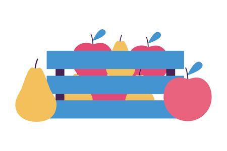 tropical fruits on wooden basket on white background vector illustration