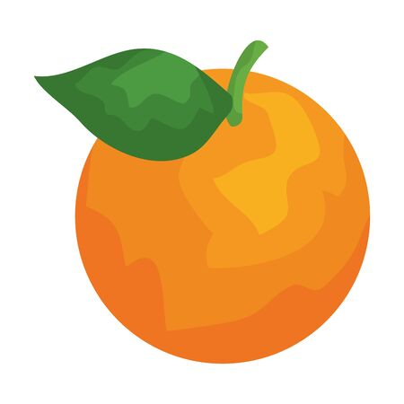 orange citrus fruit fresh icon vector illustration design