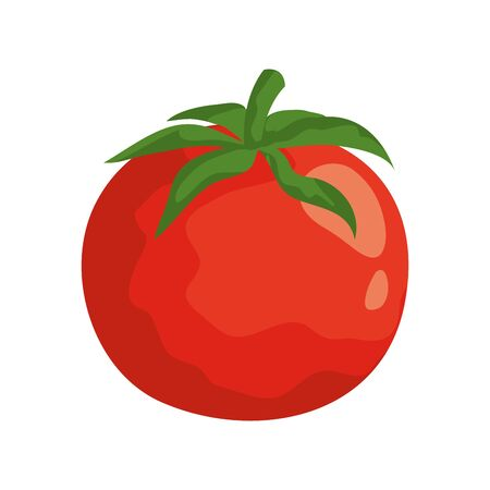 fresh tomato vegetable nature icon vector illustration design Vectores