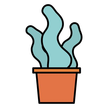 potted succulent decoration gardening flat design vector illustration