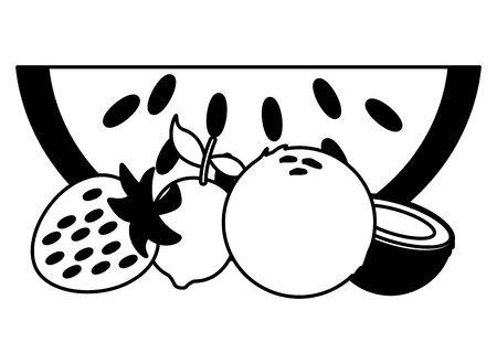 tropical fruits watermelon lemon coconut vector illustration Banque d'images - 129665534
