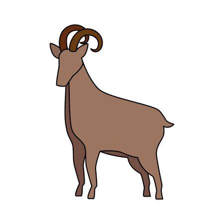 Agneau mignon animal de ferme icône vector illustration design
