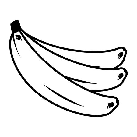 bananas tropical vector illustration on white background Banque d'images - 129748506