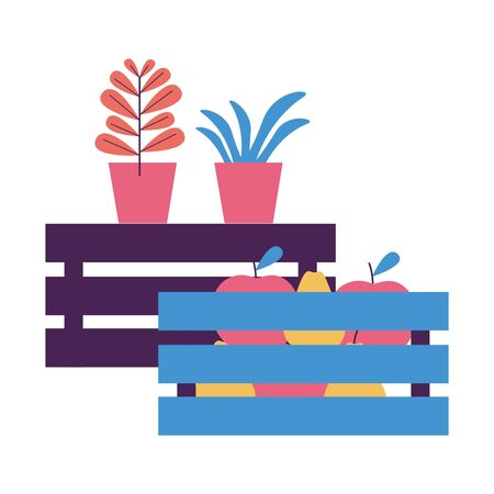 tropical fruits and potted plants vector illustration Ilustração