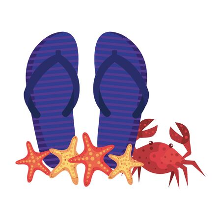 summer flip flops and crab with starfish vector illustration design Иллюстрация