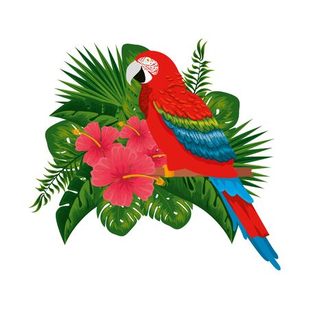 tropical and exotic parrot with floral decoration vector illustration design Banco de Imagens - 129736849