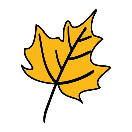 autumn dry maple leaf nature icon vector illustration design