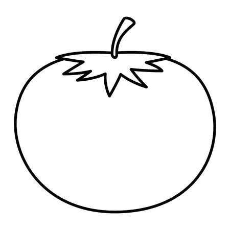 fresh tomato vegetable icon vector illustration design Illustration