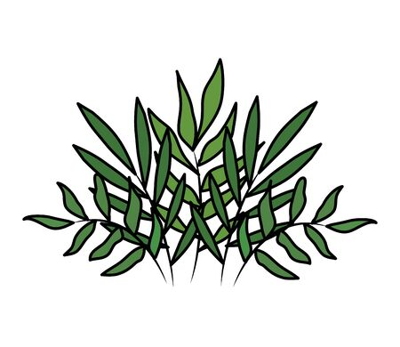 branches with leafs plants decorative icon vector illustration design 向量圖像