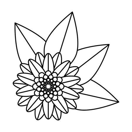 kwiat hinduski dekoracyjny odizolowany ikona wektor ilustracja projekt illustration Ilustracje wektorowe