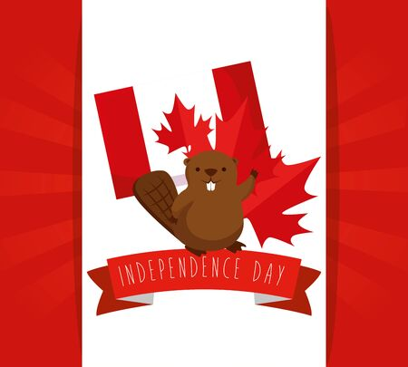 beaver with canada flag with leaf and ribbon decoration to holiday vector illustration