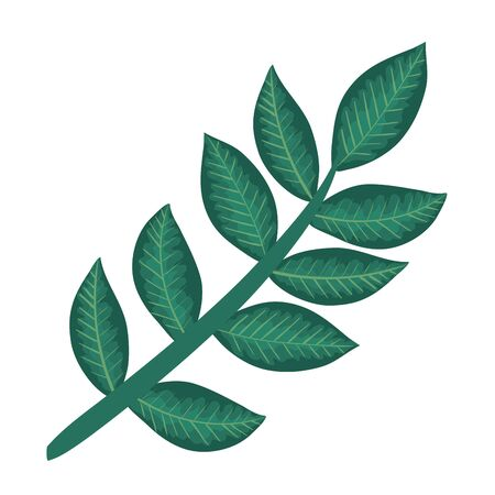 branch with leafs plants icon vector illustration design Stock Illustratie