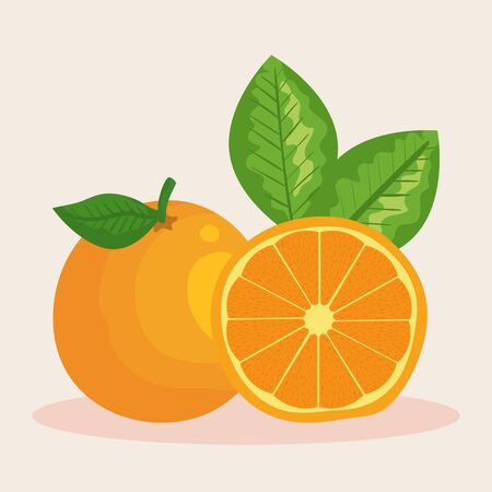 fresh orange fruit organic nutrition to healthy food vector illustration Banque d'images - 129803526