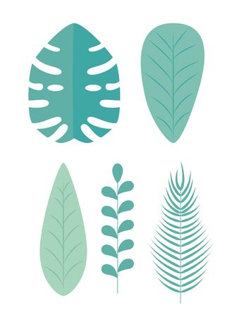 set of nature leaves plants and branches over white background, vector illustration