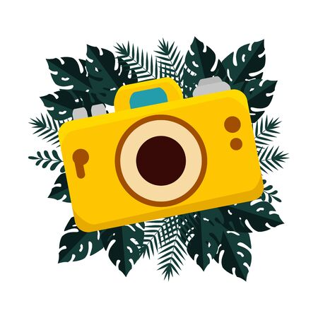 summer camera photographic and tropical leafs frame vector illustration design