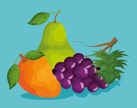 delicious pear with mango and grapes fruits over blue background, vector illustration
