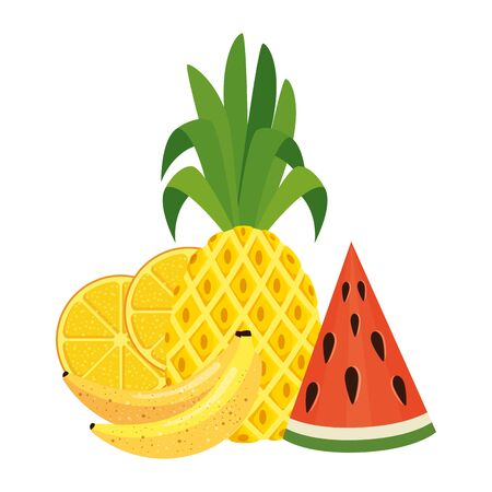summer fresh fruits nature icons vector illustration design Иллюстрация