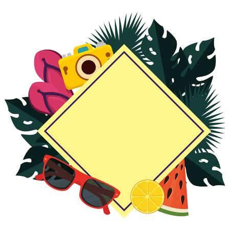 summer frame with camera and fruits vector illustration design