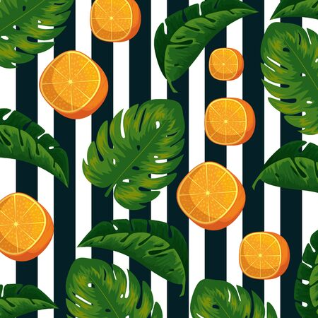 exotic oranges fruits with leaves background vector illustration