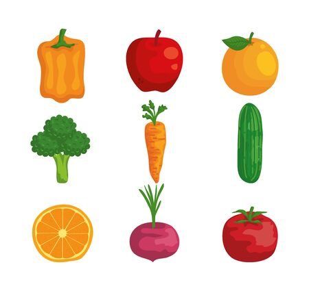 set of organic fruits and vegetables fresh nutrition over white background vector illustration Ilustrace