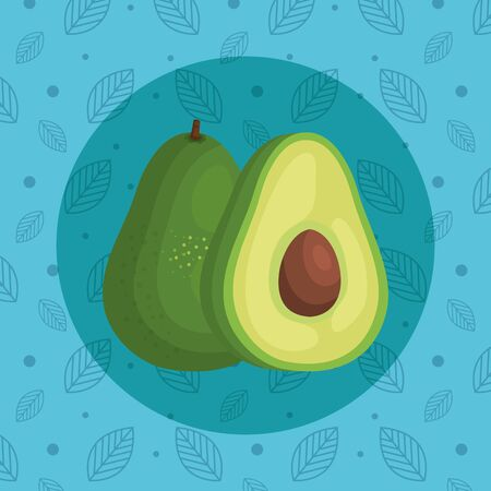 delicious avocado organic fruit nutrition over leaves with poins blue background, vector illustration