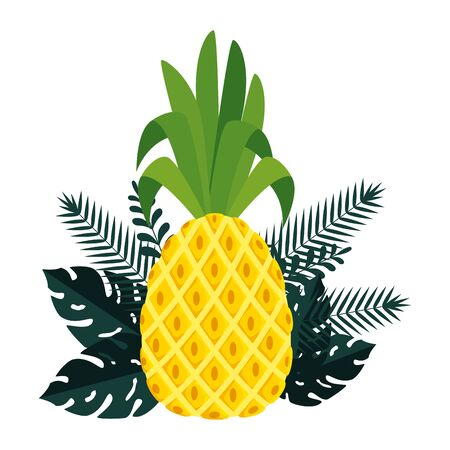 summer frame with tropical pineapple and leafs plants vector illustration design