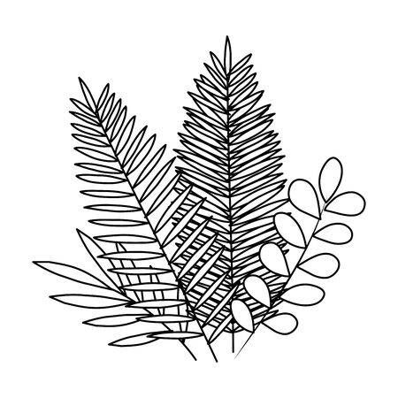 exotic and tropical leafs with branches decoration vector illustration design