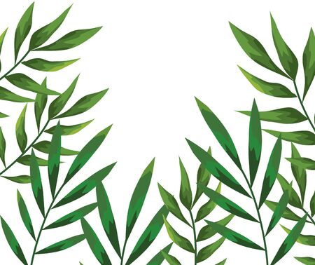 branch with leafs plants pattern background vector illustration design