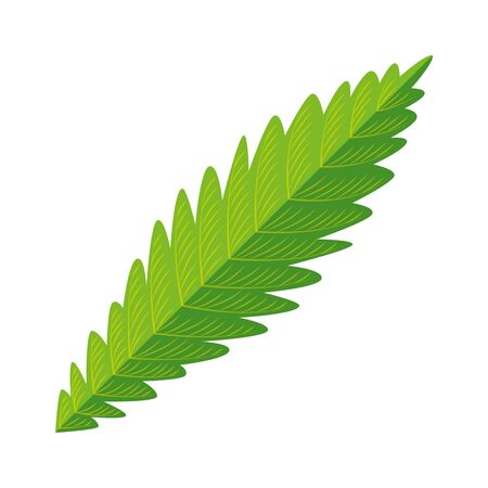cannabis plant leaf nature icon vector illustration design Çizim