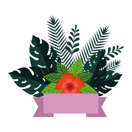 summer leafs plants and flowers decoration vector illustration design