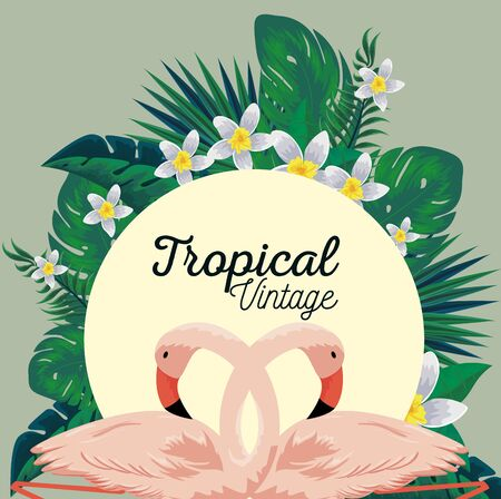 label with tropical flamingos and flowers plants vector illustration