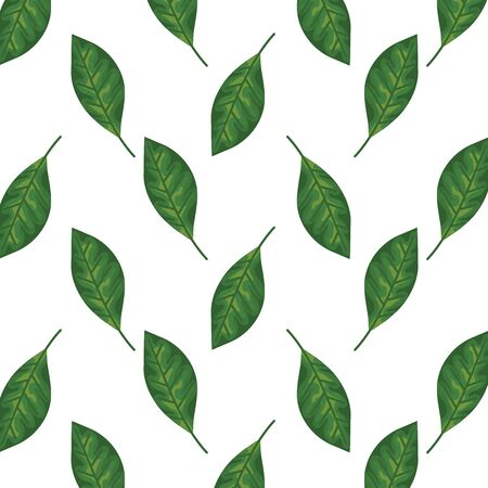 ecology leafs plants nature pattern vector illustration design