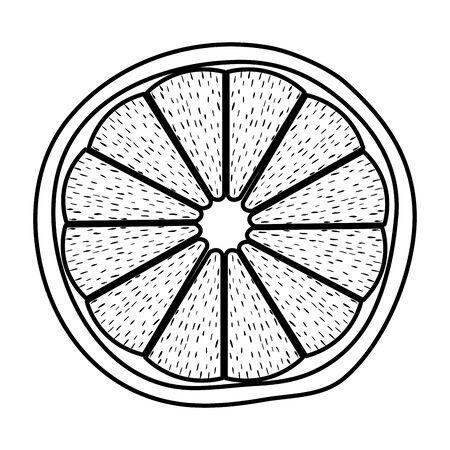 half orange citrus fruit fresh icon vector illustration design Illustration