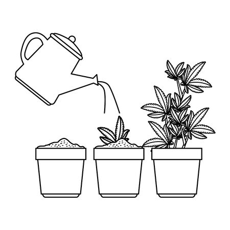cannabis plants in pots with water sprinkler vector illustration design
