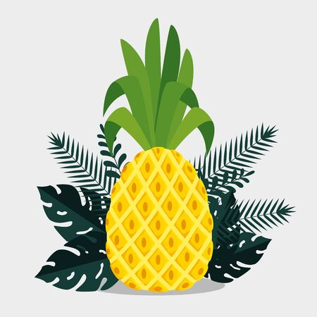 pineapple fruit with tropical leaves plants to summer holiday vector illustration