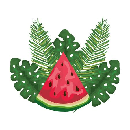 fresh watermelon tropical fruit with leafs palms vector illustration design