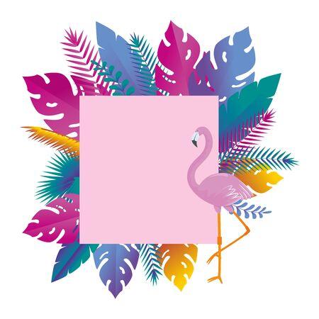 summer square frame with flemish and exotic leafs plants vector illustration design Illustration