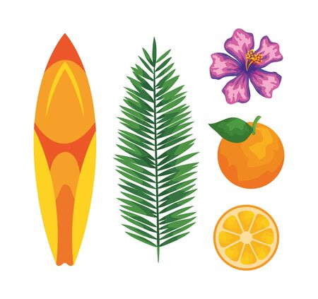 set of surfboard with leaf palm and flower with orange fruit to summer time vector illustration