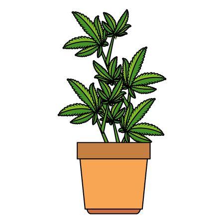 cannabis plant in pot icon vector illustration design