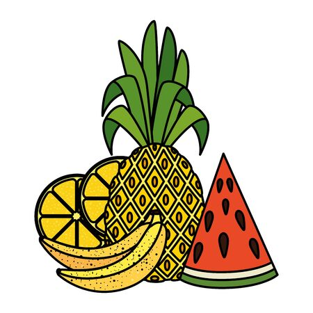 summer fresh fruits nature icons vector illustration design Ilustração
