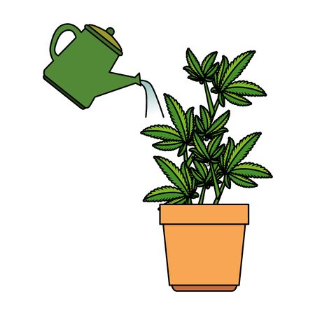 cannabis plant in pot with water sprinkler vector illustration design