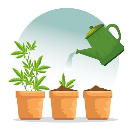 nature cannabis plant in the plantpot and watering jar vector illustration Illustration